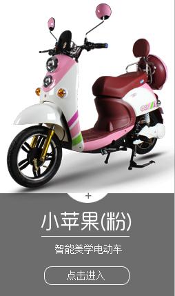 电动车好做吗?广州新动力实业有限公司改变就从现在开始